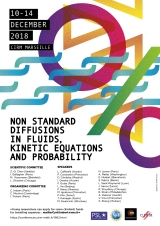 First announcement: Non stantard diffusions in fluids, kinetic equations and probability